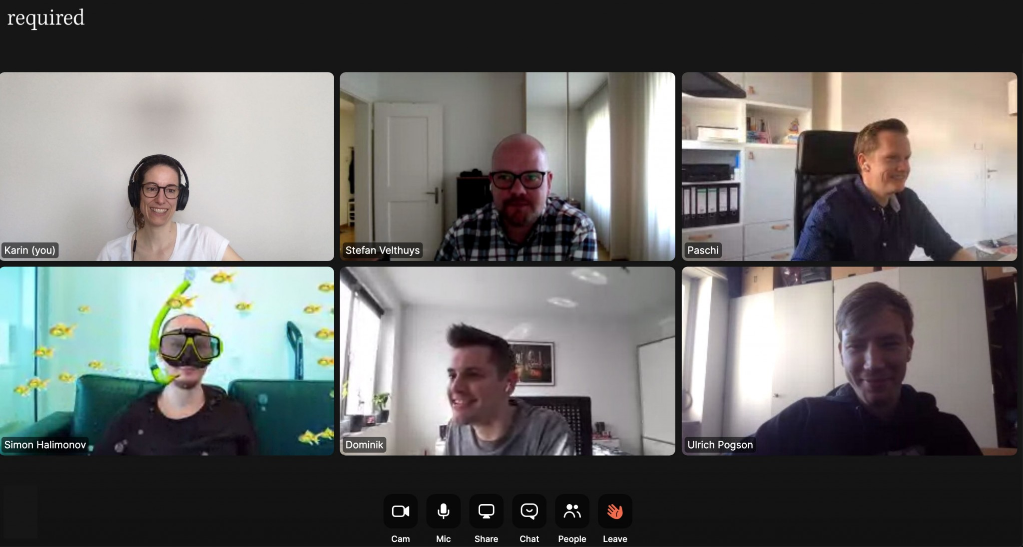 Screenshot von einem Video Meeting mit der Software Zoom